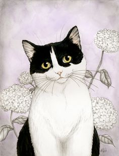 Susie by NaylaSmith on DeviantArt Watercolor Cat, Cat Colors, White Cats, Cat Drawing, Art Design, Art And Illustration, Cat Illustrations, Crazy Cats, Cool Cats