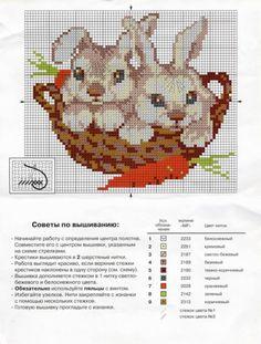 Gallery.ru / Фото #25 - Кролики - irislena