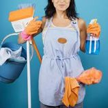 The Cleaning Supplier - cleaningsupplier.com - Professional Products And Supplies