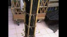 Vertical bamboo planter DIY