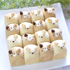 Cute Desserts, Asian Desserts, Animal Shaped Foods, Japan Cake, Japanese Milk Bread, Cute Bakery, Bakery Menu, Bread Shaping, Bread Art