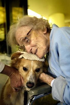 And while they might not all be purebred, they all have one thing in common: a love of people. | 26 Reasons Therapy Dogs Are The Best