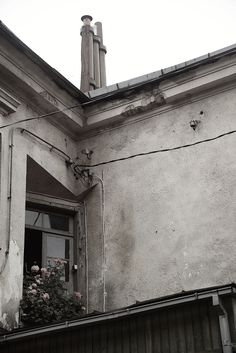 Window of ideal