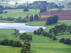 Ringarooma Valley, North East Tasmania. Farm stay and art exhibitions #northeasttasmania