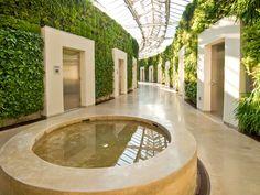 Living green walls at Longwood Gardens