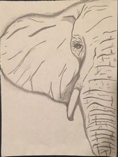 Elephant Eye Pencil sketch by CreativelyMINEbyTori on Etsy