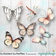 SCRIBBLED BUTTERFLIES 1