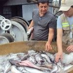 The first ship to sail under the hake experimental fishing project returned to port with good captures. The plan is carried out by the Vice Ministry of Aquaculture and Fisheries, Ministry of Agriculture, Livestock, Aquaculture and Fisheries (Magap).