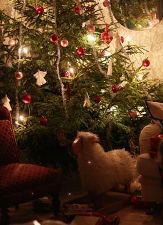 Swedish christmas celebration