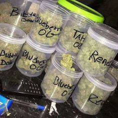 Buy og kush and medical marijuana online - Cannabis Dispensary Store Cannabis Cures Cancer, Cannabis Vape, Cannabis Seeds For Sale, Cannabis Seeds Online, Medical Marijuana, Kingston, Growing Marijuana Indoor, Shops, Shopping