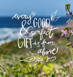 Every good and perfect gift is from above, coming down from the Father of heavenly lights, who does not change like shifting shadows. James 1:17