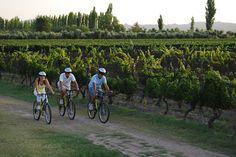 You may enjoy Algodon's landscape by bike too | También puede disfrutar el paisaje de Algodon en bicicleta.