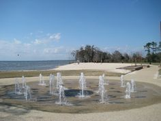 Across the Pontchartrain bridge from New Orleans in Mandeville LA, this RV park is very clean and relaxing.