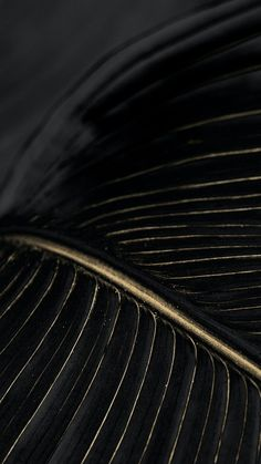 Black And Gold Aesthetic, Leaf Background, Photo Banner, Black Wallpaper, Aesthetic Backgrounds, Wok, Royalty Free Images, Cool Designs, Paradise