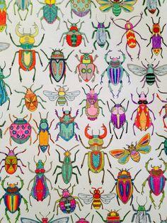 1000 images about mes coloriages on pinterest johanna - Mon jardin secret coloriage ...