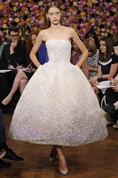 Christian Dior Amazing dress check Anna wintour's look on the background