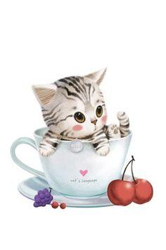 Cup Cute Kitten   Free Wallpaper