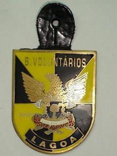 B. V. LAGOA
