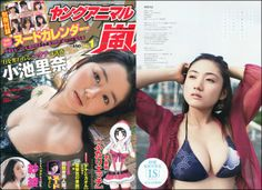 Young Animal(Yangu Animaru) - Storm 1 (1 January 2014) Japan   299 pages   PDF   123.73 MB Young Animal (Yangu Animaru) is a magazine in Japan that features scantily clad women. It is published by Hakusensha and issued twice a month on Fridays in B5 format.