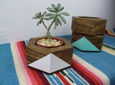 Madera cactus y suculenta titular - jardinera geométrica - maceta suculenta Rectangular caja de RoamingRootsWoodwork en Etsy https://www.etsy.com/es/listing/279399034/madera-cactus-y-suculenta-titular