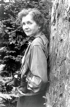 Rachel Carson started the environmental movement. Her book, Silent Spring, was a shot across the bow of big chemical companies and, because the world listened, eagles are no longer an endangered species and peregrine falcons roam the skies over Manhattan.