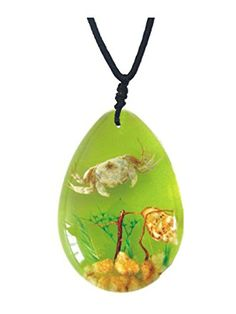WeGlow International Real Crab Seashells and Underwater Plant Life on Green Background Necklace >>> You can find more details by visiting the image link. (Note:Amazon affiliate link) #ToysGames5To7Years