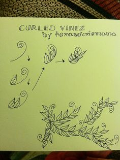 Curled vinez tangle-- good ideas for doodling. Trying to up my creativity.