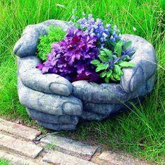 :bello jardin )