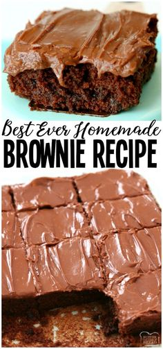 Best Classic Brownie Recipe made with basic ingredients and baked to fudgy, choc.Best Classic Brownie Recipe made with basic ingredients and baked to fudgy, chocolate perfection! The easy chocolate frosting is amazing. These really are the BEST BR No Bake Chocolate Desserts, Chocolate Frosting Recipes, Brownie Frosting, Homemade Chocolate, Easy Desserts, Dessert Recipes, Baking Desserts, Chocolate Frosting For Brownies, Frosted Brownies