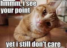 Yet I still don't care