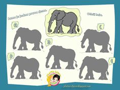 Zoek de goede schaduw bij de olifant / Radni listići