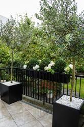Window boxes | Outdoor planters | Contemporary garden designs.