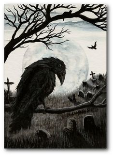 1000 images about Ravens on Pinterest | Raven Raven tattoo and Crows