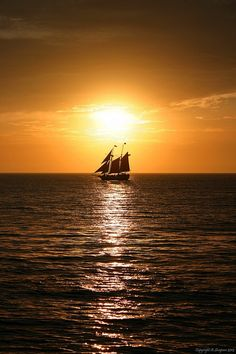 Petit: time to sail off into the night …g'night, everyone ♥ sweetest dreams