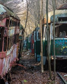 Touring the Abandoned Trolley Graveyard near Johnstown, Pennsylvania offers a chance to see the trolleys collected by the Vintage Electric Streetcar Company. Haunted Places, Abandoned Places, Johnstown Pennsylvania, Old Cemeteries, Graveyards, 17th Century Art, Angel Statues, Buddhist Art, Luxor Egypt