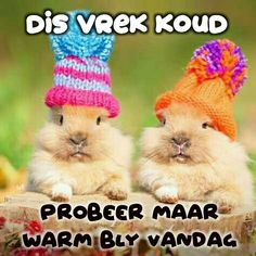 Morning Greetings Quotes, Good Morning Quotes, Cold Weather Quotes, Lekker Dag, Live Life Happy, Goeie More, Angel Prayers, Afrikaans Quotes, Morning Blessings