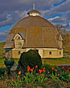 Round-barn This barn is west and north of St John, WA on highway 23. I believe there were 3 built on this plan, and this one alone survives.