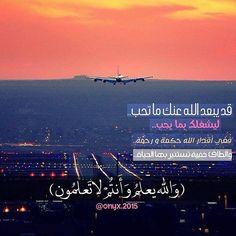 by rmzyat_hadefah