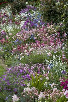 english cottage garden borders - This is what Im trying to achieve. - english cottage garden borders – This is what Im trying to achieve. I only wish … english cot - Cottage Garden Borders, Cottage Garden Design, Border Garden, Country Cottage Garden, Cottage Garden Plants, Garden Ideas Cottage Style, Small Country Garden Ideas, French Garden Ideas, Garden Design Ideas