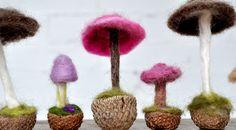 Mushroom-11