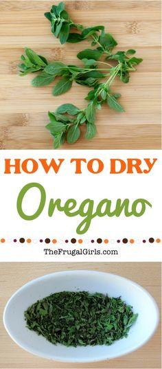 How to Dry Oregano T