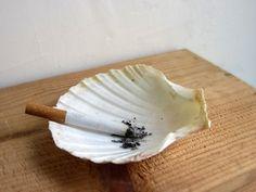 Shells used as ashtrays