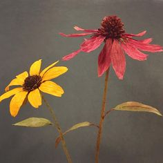 Black-eyed Susan and Purple Coneflower crepe paper flowers by Deanna Toloudis, aka @posy.girl on Instagram
