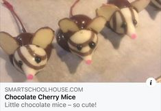Chocolate Mouse, Chocolate Cherry, St Clare's, Black Eyed Peas, Brunch, Grandchildren, Cute, Kawaii, Chocolate Covered Cherries