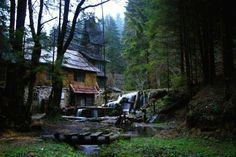 Forest Cabin in a remote Artist's Community, Bosnia, $16 a night