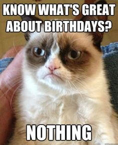 <3 grumpy cat - Know what's great about birthdays?