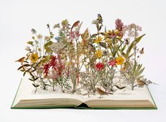 This isn't a story to be told, but a portfolio book-cut sculpture by Su Blackwell. This is what books do for your mind.