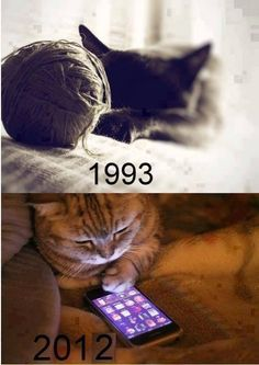 cats then, cats now