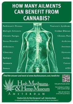Hemp Healthy Today: How Many Ailments Can Benefit From Cannabis  http://thehempoilbenefits.com