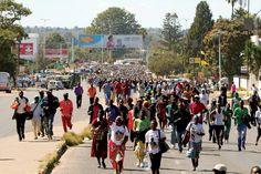 Ruling Zanu PF preparing own biometric voters' roll - Zimbabwe Independent - http://zimbabwe-consolidated-news.com/2017/03/31/ruling-zanu-pf-preparing-own-biometric-voters039-roll-zimbabwe-independent/